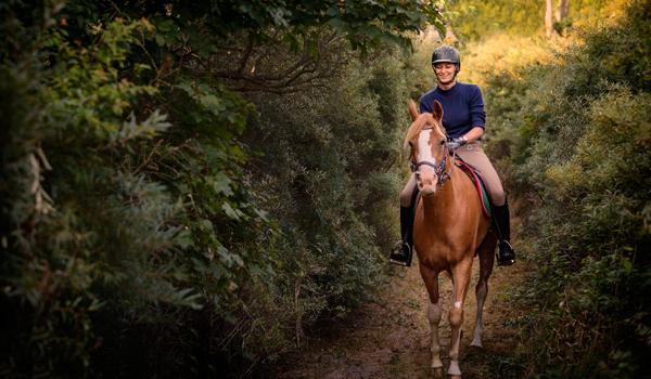 Horse Tours of Gettysburg, Pennsylvania